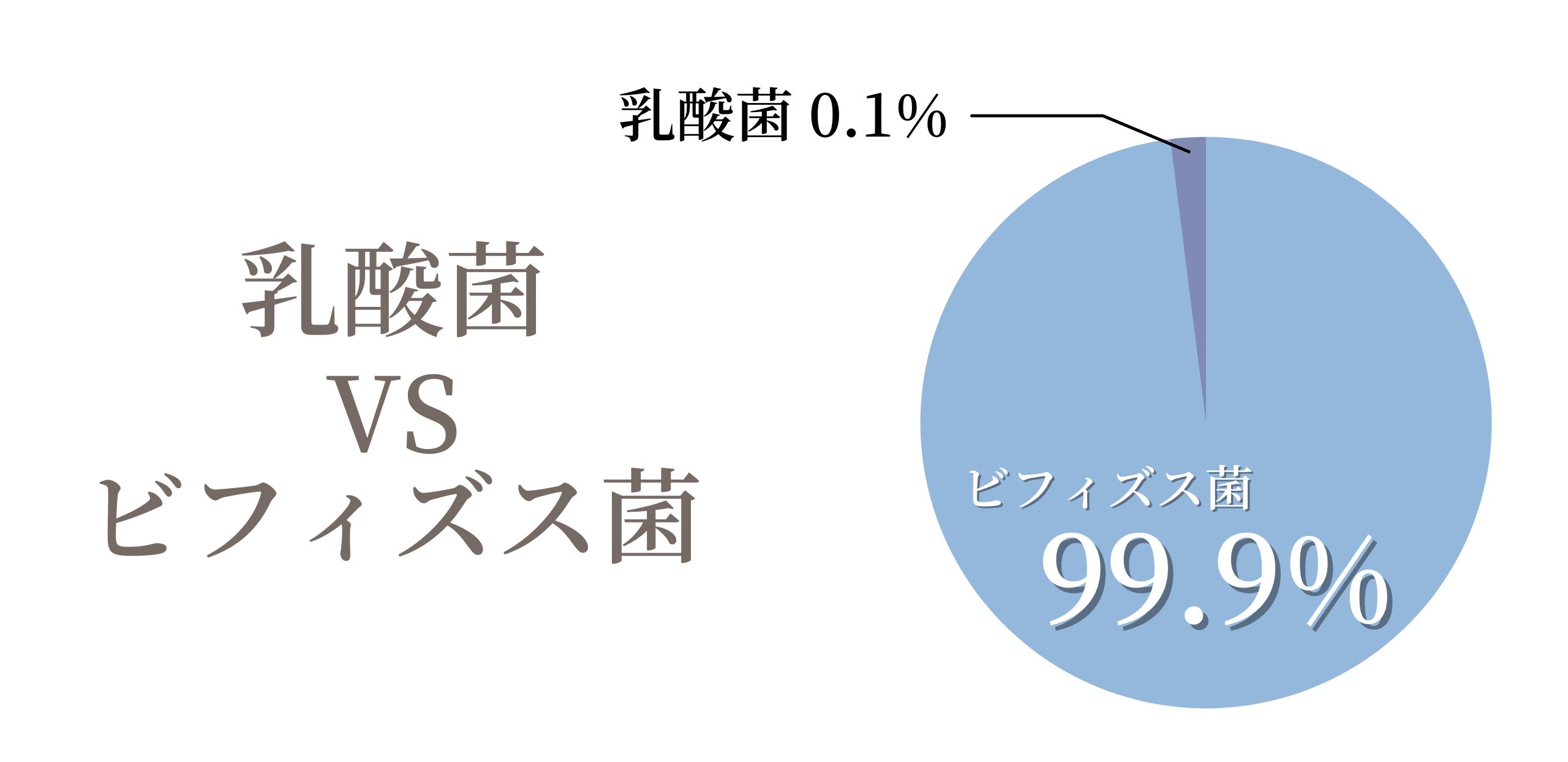 乳酸菌とビフィズス菌の割合