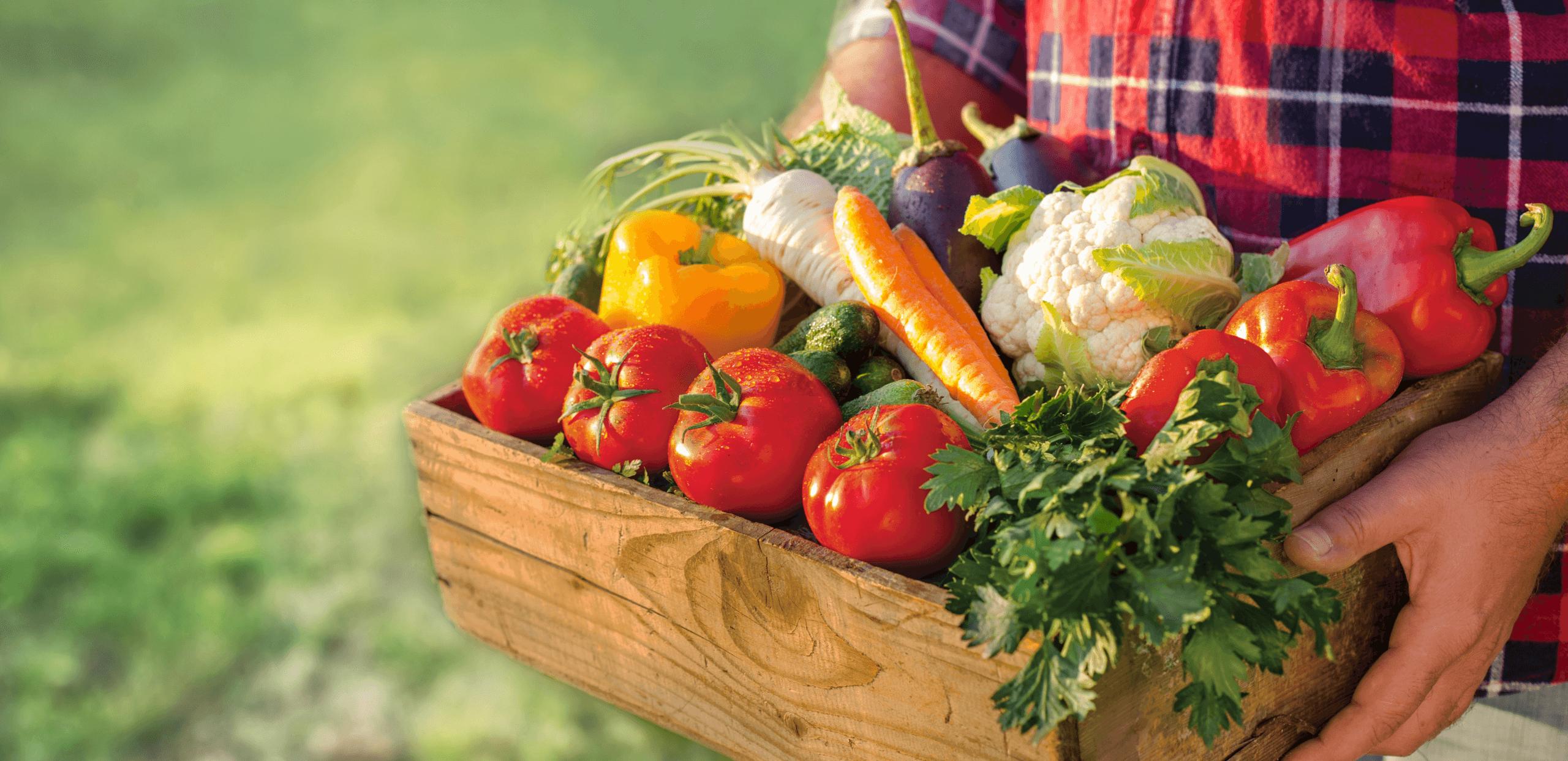ニキビと野菜のまとめ
